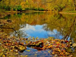 00-BeckleyCreekPark-2014-IMG-5813-HDR-WP-Master by darkmoonphoto