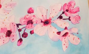 Cherry blossom watercolor by Squizzella