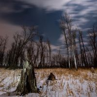 Sibley at Full Moon II by MarshallLipp