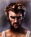 The Wolverine by armedrobot