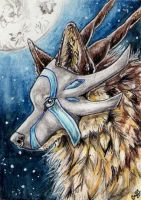 ACEO-Syphellium by Cally-Dream