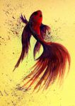 Beautiful Betta by TroubleL