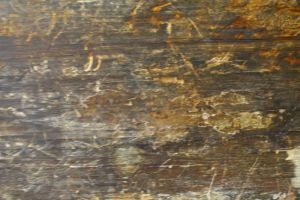 Wood Texture 8242 by Moon-WillowStock