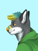 favorite college dog by degreaser