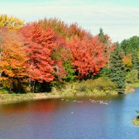 Sigh..I Already Miss the Fall by Brian-B-Photography