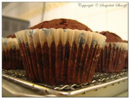 Chocolate Muffin by munchinees