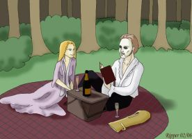 Book, clearing and picnic by RipperBlackstaff