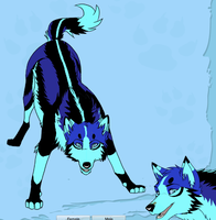 crazy wolf colors by articfoxice