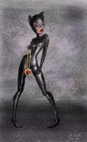 Catwoman by digistyle