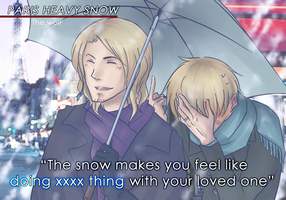 APH: Paris heavy snow by wolf-zaa