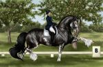 Draft Dressage by apollo22