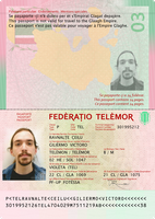 Telemor Passport Project 3.0 - Data Page by requindesang