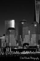 NYC 005 by DalePhotography