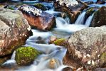 Green brook by mutrus