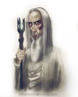 Saruman Color by timshinn73