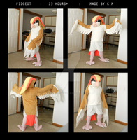 Pidgeot Cosplay - AB2014 / AAC2014 by HarmoniousReprise
