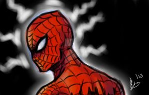 Spidey DSC by FireDestined4