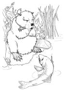 The Beaver and the Trout by portablecity