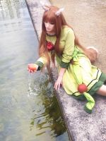 Liquid apple [Spice and wolf] by Milukyo