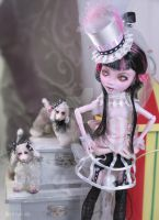 Haunted circus (custom Monster high) by NickiiRose