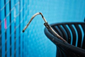 Wire in Trashcan by tinaateurface