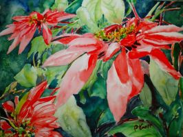 Poinsettia 2 by p-e-a-k