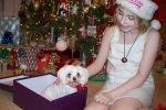 For Christmas Namine got... by JAMcosplay