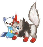 Zoura and Oshawott by Nid15