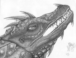Not a Crocodile by R-Eventide