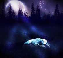 Wolf's Moon by Frama