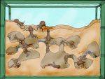 People in an ant farm by Deimos-Remus