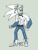 Rys the hedgehog by Sonic-Toad