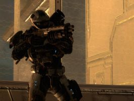 Halo Reach: backed up by purpledragon104