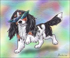 Someone Say, Cool Cavalier? by Bafa