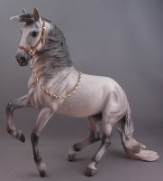 1:9 scale halter- whiskey by silverdragon76