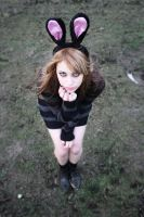 Bunny ID - 2011 by xSick