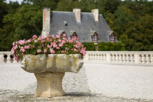 6783 - Chenonceau by Jay-Co