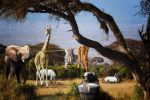 Laundry day in Africa by hankep