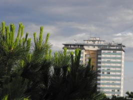 nature and buildings by cavalars