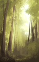 Forest Study by harrie5