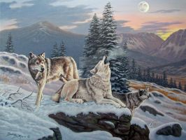 Wolves of Yellowstone by WildartBD