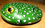 Frog by hollyhadfield