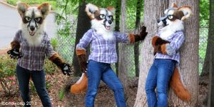 Gray Fox Partial for Sale by LobitaWorks