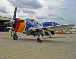 P-47D Thunderbolt by DarkWizard83