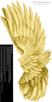 Dual Upright Wing - Golden by Thy-Darkest-Hour