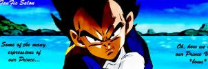 Vegeta banner 2 by Amersss