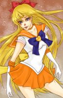 Sailor Venus by shiawase-chan
