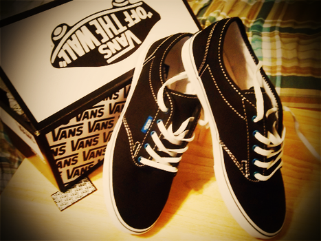 Vans by GlacierWaves