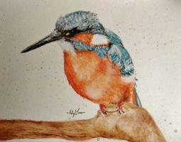 Kingfisher Painting by Marmiexx