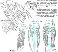 Wings anatomy and reference by G8ORSRULE